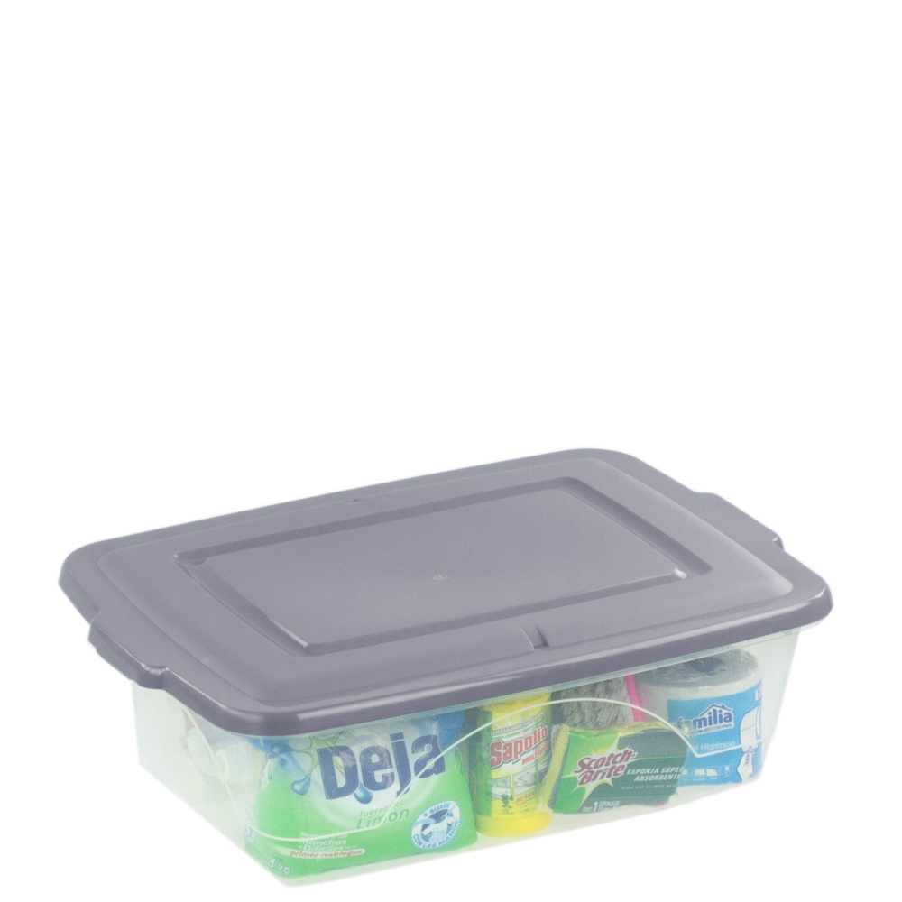Box Container 30 L. C/T
